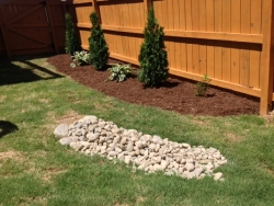 "3""-5"" Chalet Stones for Erosion with Patriot Hosta and Leyland Cypress in Background"