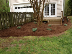 Landscape Renovation After
