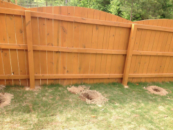 Landscape Renovation Before