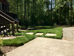 Turf Type Tall Fescue with Slate Stepping Stones